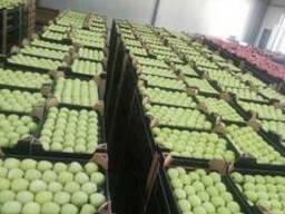 Apples fresh - фото 1