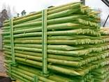 Rounded pine pillars, fences, palisades - фото 1