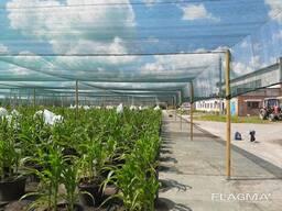 Теневая сетка - защита от непогоды для агроплощадок - фото 8